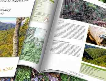 Kuziy-Trybushany_WILDForest_Brief_2200x1057.jpg - European Wilderness Society  - CC NonCommercial-NoDerivates 4.0 International