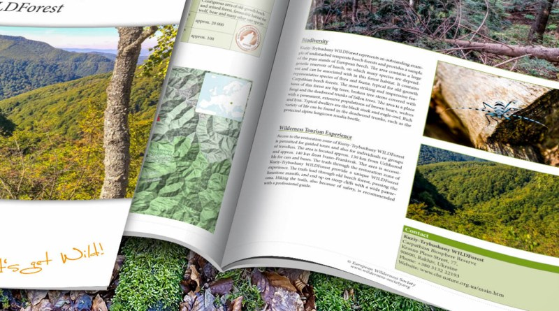 Kuziy-Trybushany_WILDForest_Brief_2200x1057.jpg - © European Wilderness Society CC BY-NC-ND 4.0