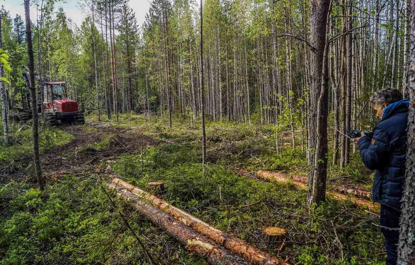 Archangelsk-21887.JPG - © European Wilderness Society CC BY-NC-ND 4.0