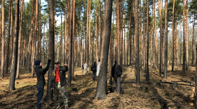 Forest Fire Treuebrietzen Brandenburg-22510.JPG - © European Wilderness Society CC BY-NC-ND 4.0