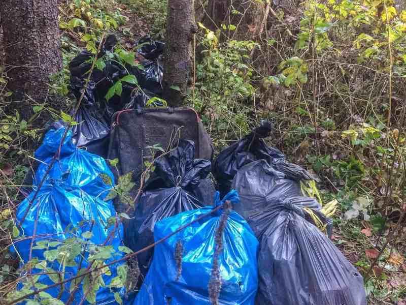 CEW Cleaning up Slovenysky Raj-30363.jpeg - © European Wilderness Society CC BY-NC-ND 4.0