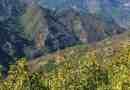 Cervenata stena Reserve-30119.jpeg - © European Wilderness Society CC BY-NC-ND 4.0