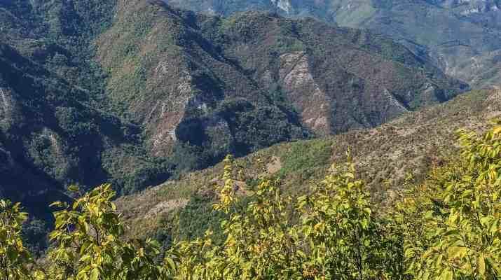 Cervenata stena Reserve-30119.jpeg - European Wilderness Society - CC NonCommercial-NoDerivates 4.0 International