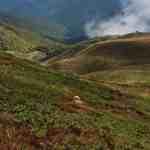 Kongura reserve_Nature Park Belasitza-29924.jpeg - © European Wilderness Society CC BY-NC-ND 4.0