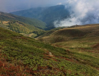 Kongura reserve_Nature Park Belasitza-29924.jpeg - European Wilderness Society - CC NonCommercial-NoDerivates 4.0 International