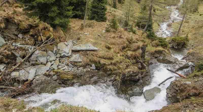 EWS Lockdown-31227.JPG - © European Wilderness Society CC BY-NC-ND 4.0