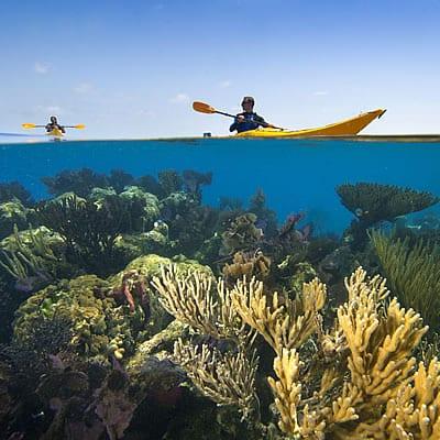 ua-kayak-coral
