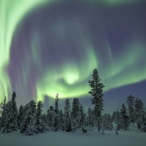 Magical Northern Light