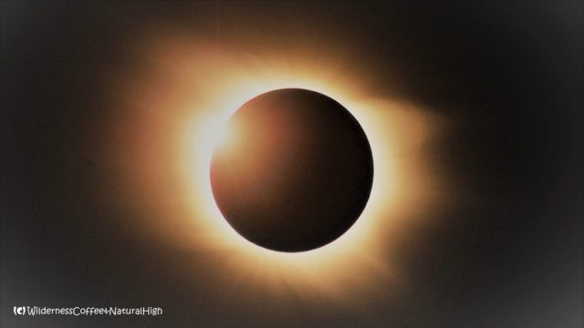 Total solar eclipse, popular stories