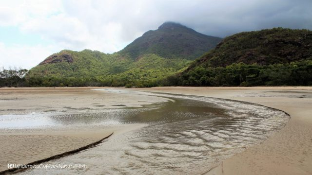 Remote islands, Hinchinbrook Island, Queensland, Australia