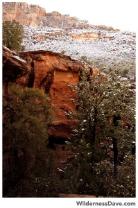 Hidden Canyon Ruins in the snow