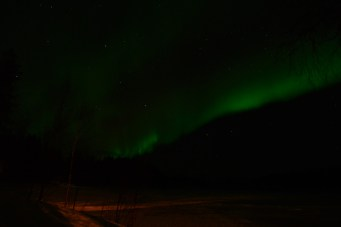 northern-lights-in-auktsjaur