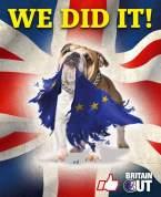 BrexitBNP