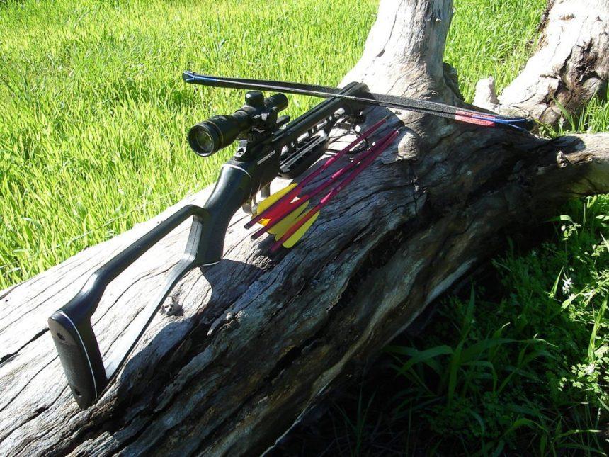 Recurve crossbow