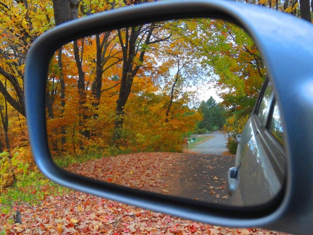 Fall Color 2012 Minnesota Arboretum (1/6)