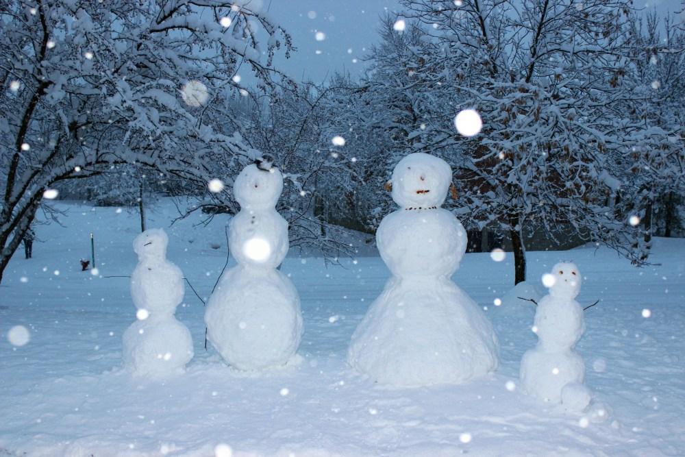 Minnesota Snow Fall December 2012 (1/6)