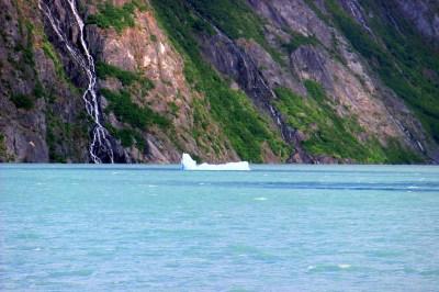 Portage Glacier Iceberg