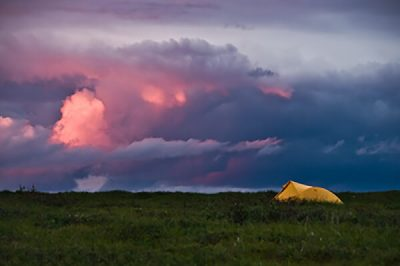 Backpacking tent in Denali National Park
