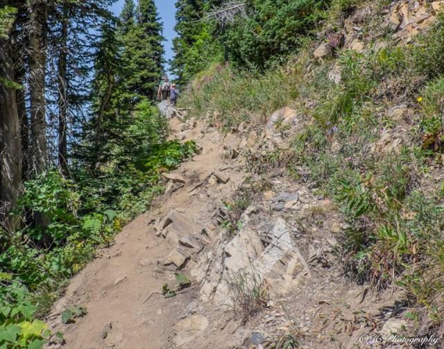 trail rocky-6142