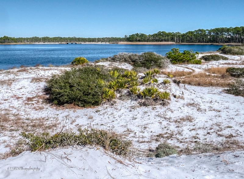dune lake-