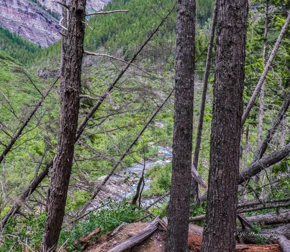 avalance creek 9363-