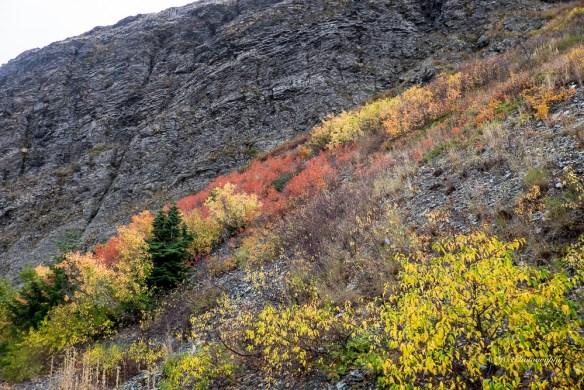 6-hillside-4856