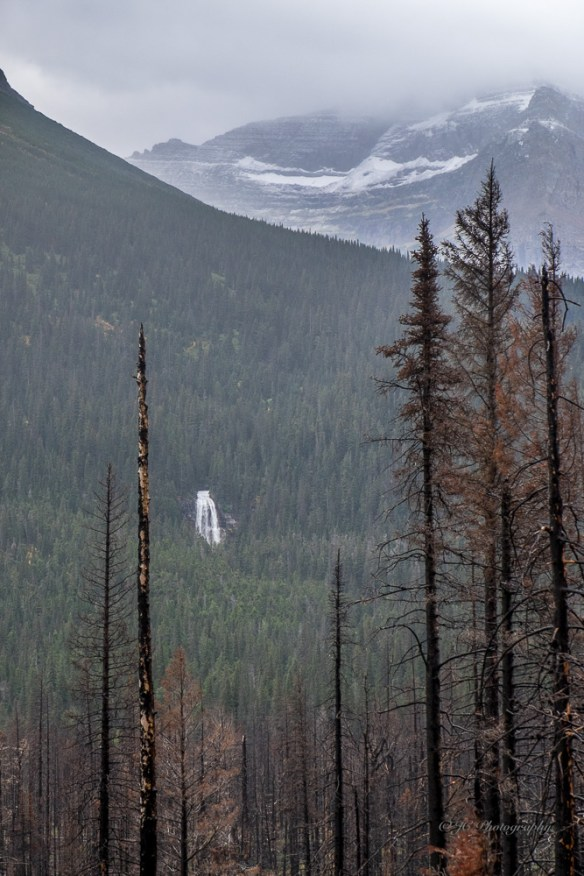 8-st-mary-falls-jackson-glacier-4881