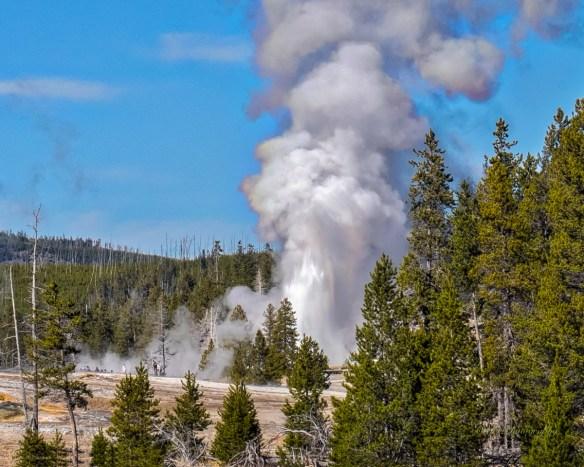 grand-geyser-9395