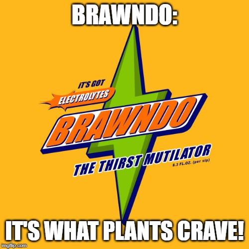 brawn2