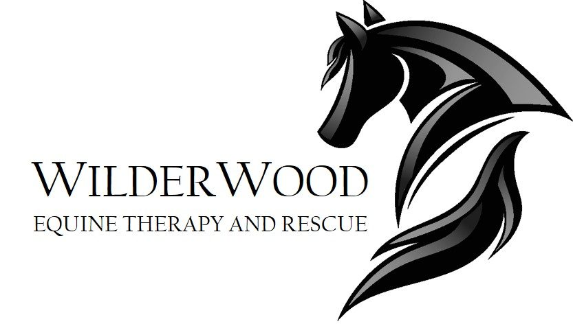 Wilderwood Equine Therapy and Rescue