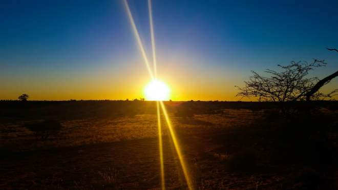 africa-1170051_1280