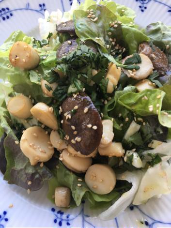 Salat mit Kräuterseitlingen und Sesam