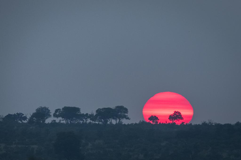 Skukuza Safari Lodge bush break - Sunrise in the Kruger