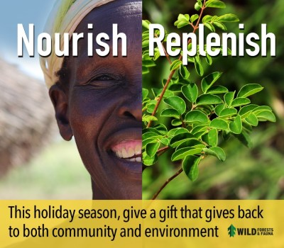 Nourish, Replenish: Gift a miracle this holiday season