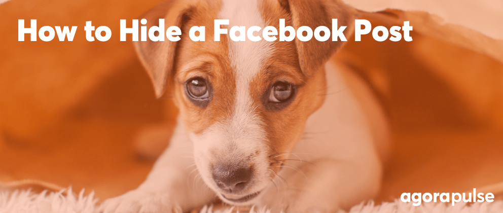 How to Hide a Facebook Post (and Why): A Step-by-Step Guide