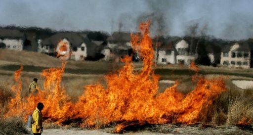 golf course prescribed fire