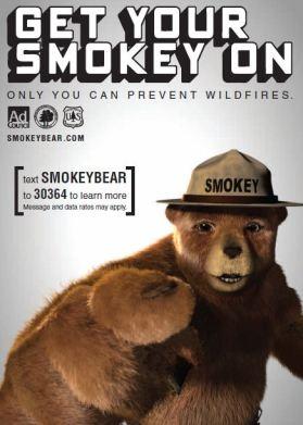 Smokey Bear poster