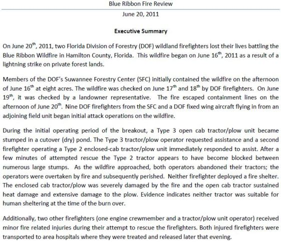 Blue Ribbon fire report, Executive Summary