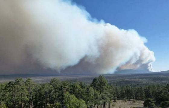 Whitewater-Baldy fire, as seen from the old Negrito fire lookout tower, 5-26-2012, NWS photo
