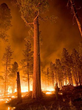 Night fire, Whitewater-Baldy Fire, June 6, 2012 credit Gila NF