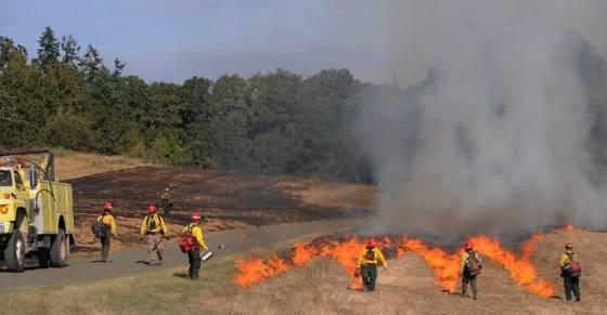 USFWS Prescribed fire in Williamette Valley