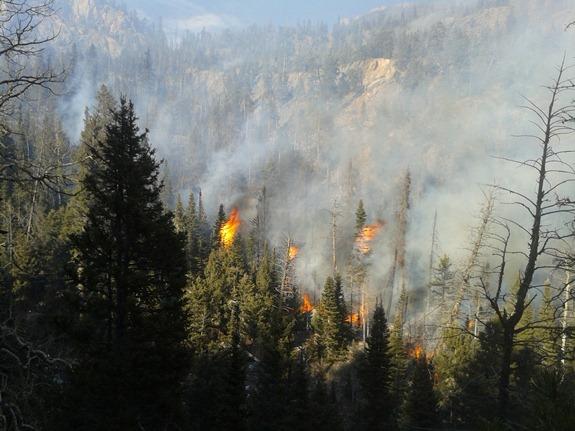 Fern Lake Fire November 27, 2012