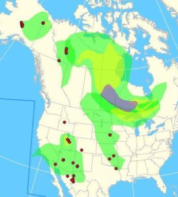 us smoke map