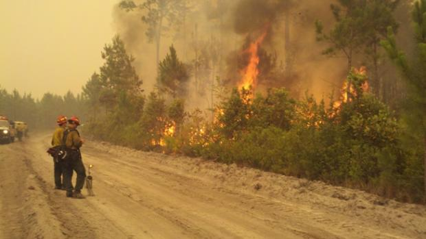 Firefighters conducting firing operations