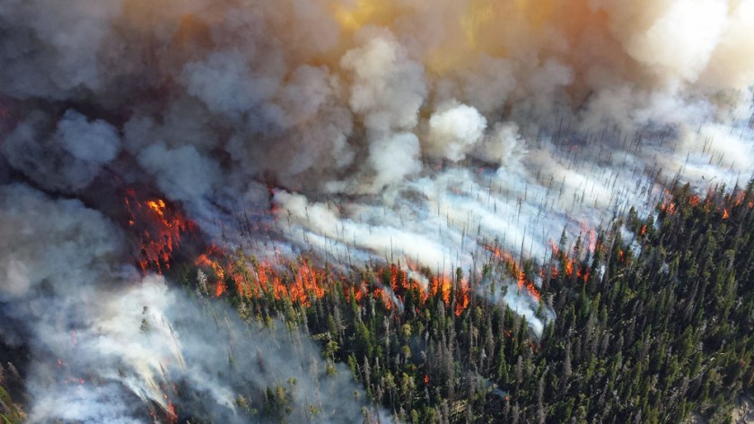 Alder Fire in Yellowstone National Park