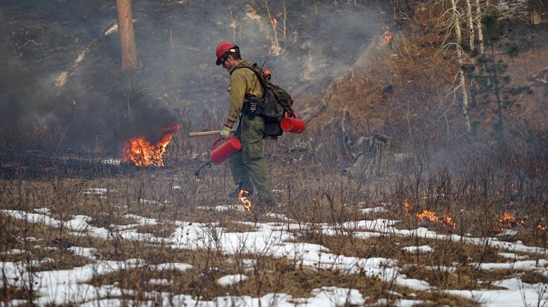 Whaley prescribed fire South Dakota