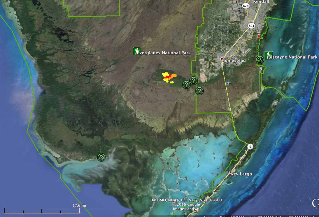 Long Pine Key Fire in Everglades National Park - Wildfire Today