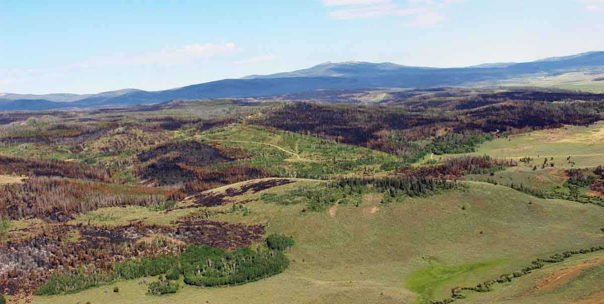 The spread of the Beaver Creek Fire in northern Colorado slows