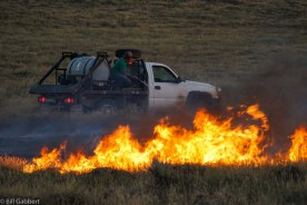 Attacking a flank of the Indian Canyon Fire that had been knocked down but flared up again, at 8:23 p.m. MDT July 16, 2016.