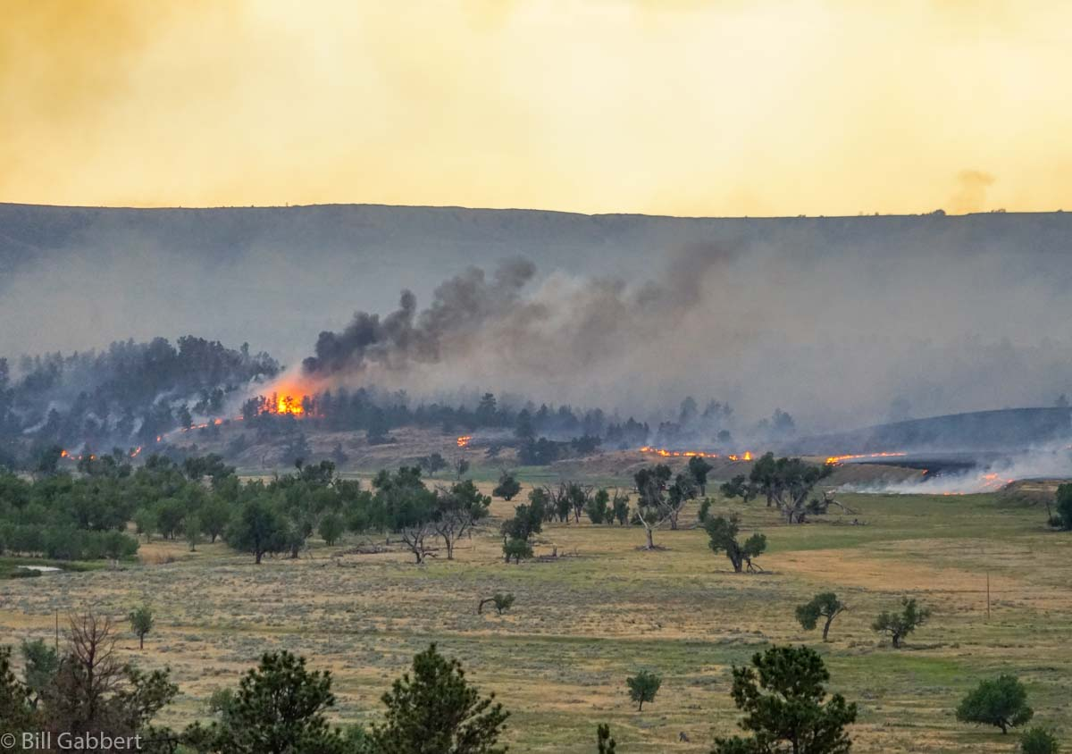Moderate weather and air tankers slow the Indian Canyon Fire near Edgemont, South Dakota